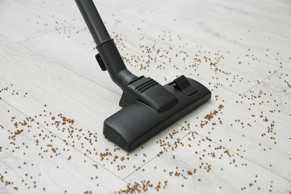 Brush or vacuum regularly