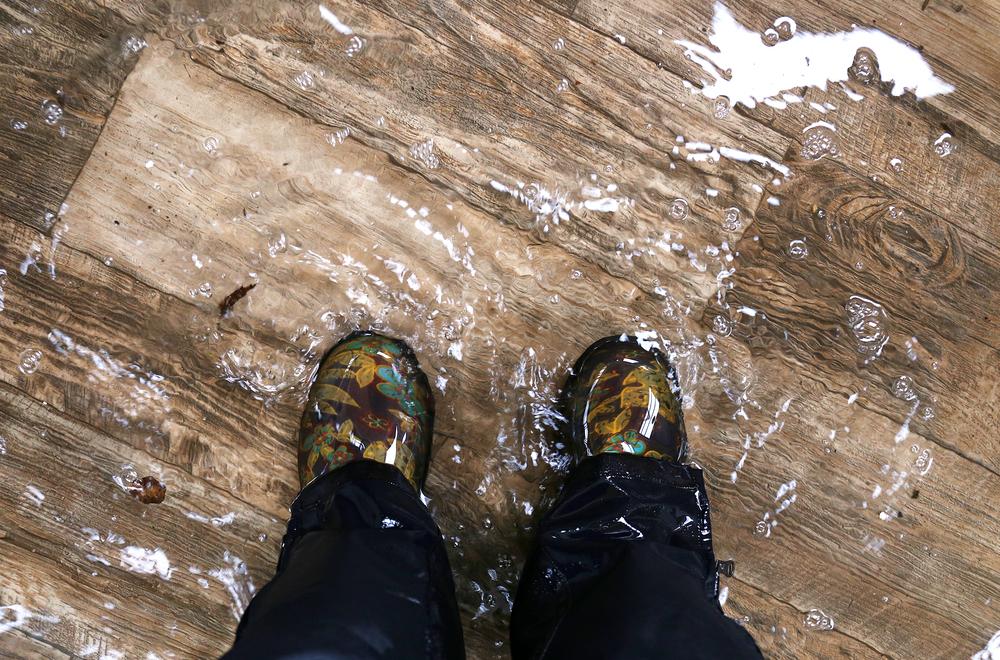 Waterproof and Wonderful